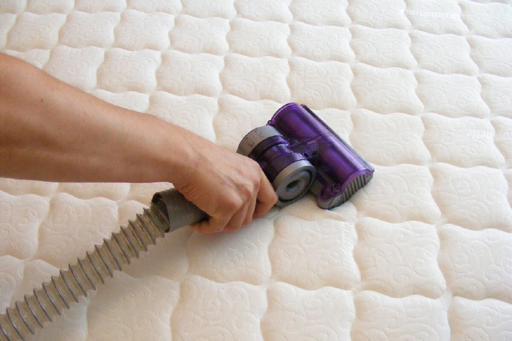 CONTROLLING BED BUGS